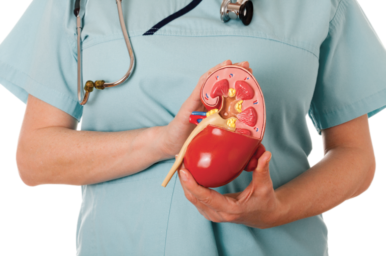 Гипотония мочевого пузыря у женщин > Здоровье и уход за собой