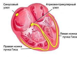 simptomy-i-lechenie-postinfarktnogo-kardioskleroza (2)
